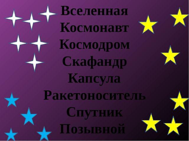 Вселенная Космонавт Космодром Скафандр Капсула Ракетоноситель Спутник Позывной