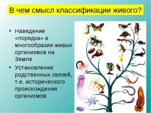 Наведение «порядка» в многообразии живых организмов на Земле Установление род