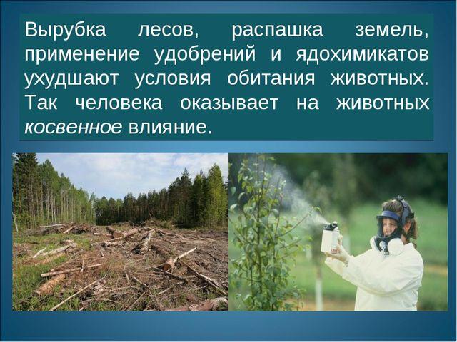 Вырубка лесов, распашка земель, применение удобрений и ядохимикатов ухудшают...