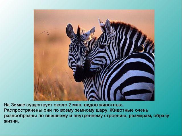 На Земле существует около 2 млн. видов животных. Распространены они по всему...