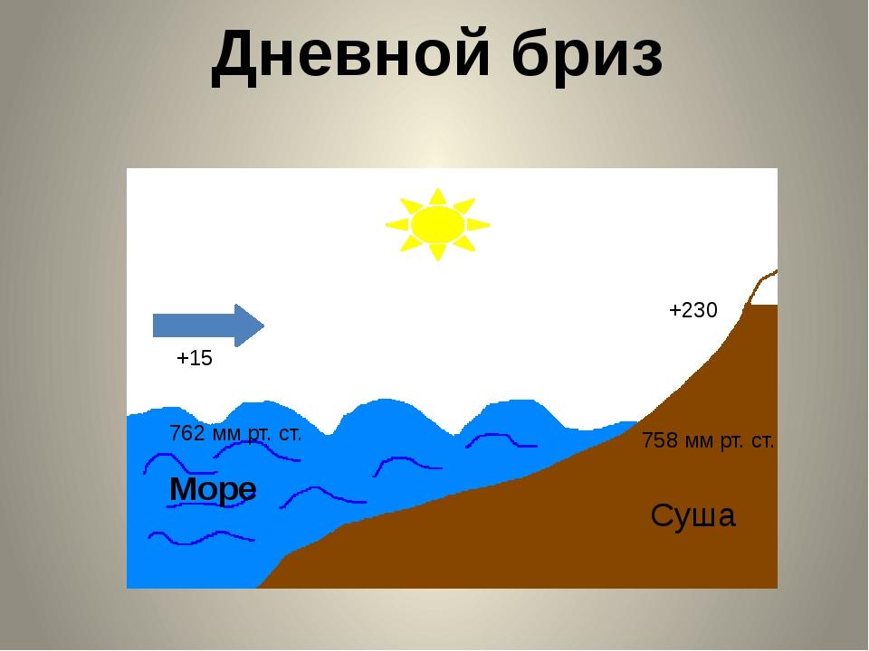 Муссоны Летний муссонЗимний муссон