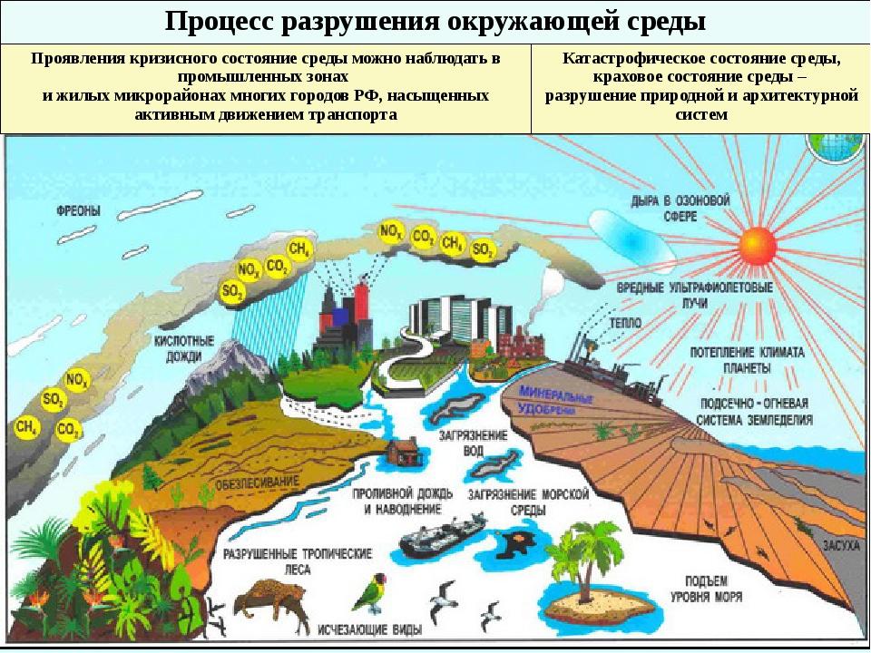 Процесс разрушения окружающей среды Проявления кризисного состояние среды мо...