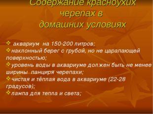 Содержание красноухих черепах в домашних условиях аквариум на 150-200 литров;