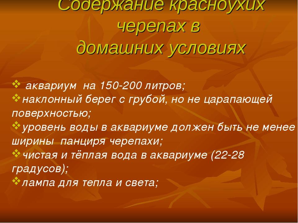 Содержание красноухих черепах в домашних условиях аквариум на 150-200 литров;...