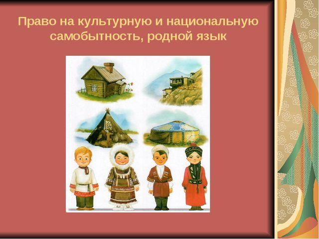 Право на культурную и национальную самобытность, родной язык