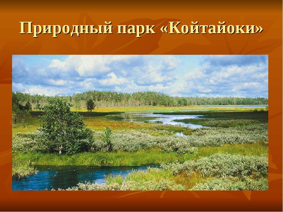 Природный парк «Койтайоки»