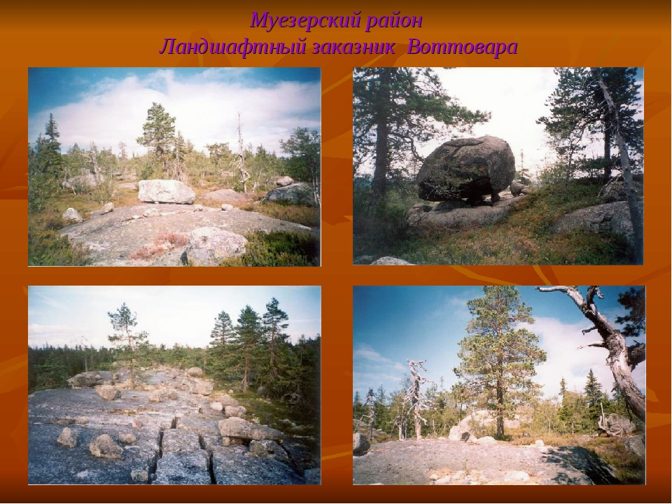 Муезерский район Ландшафтный заказник Воттовара