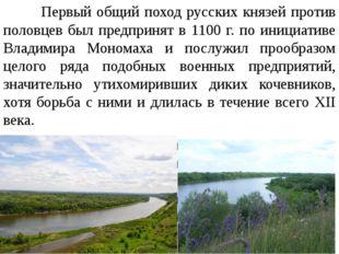 Первый общий поход русских князей против половцев был предпринят в 1100 г. п
