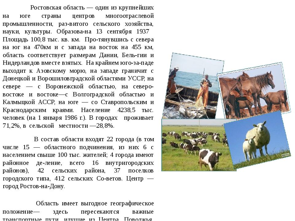 Ростовская область — один из крупнейших на юге страны центров многоотраслево...