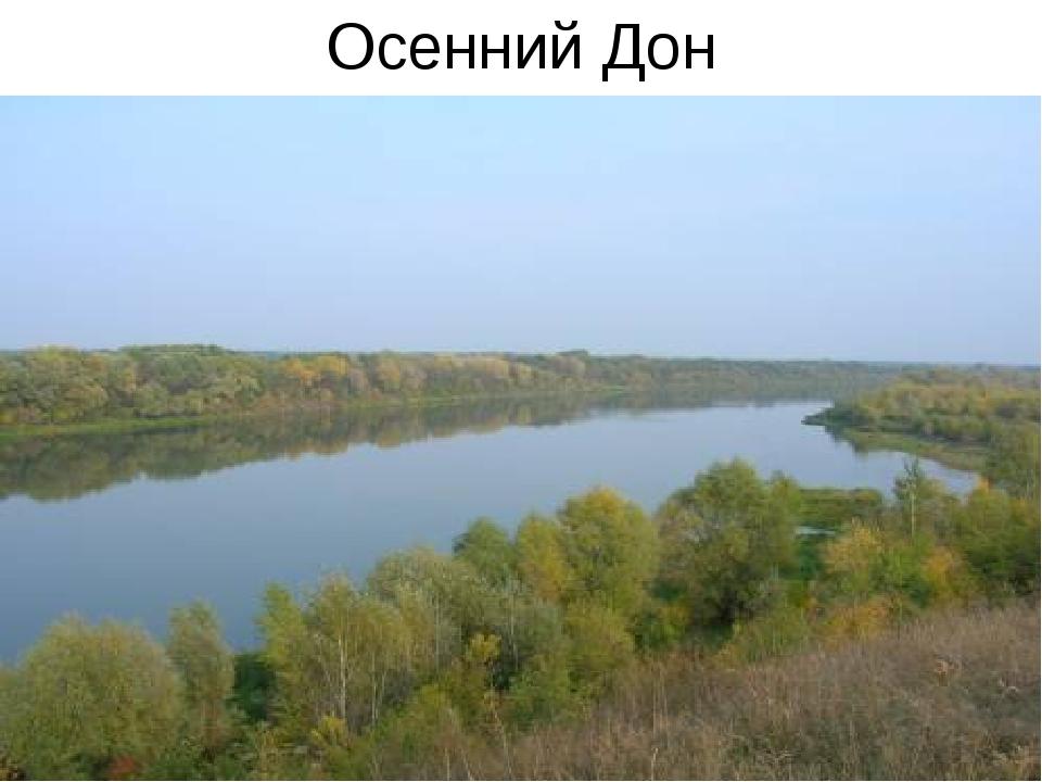 Осенний Дон