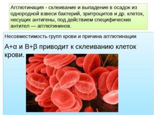 Несовместимость групп крови и причина агглютинации А+α и В+β приводит к склеи