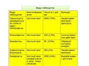 Виды лейкоцитов Виды лейкоцитов Местообразования Число в 1 кубмм Функция Гран