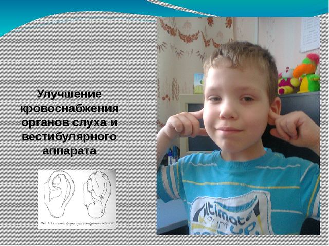 Улучшение кровоснабжения органов слуха и вестибулярного аппарата