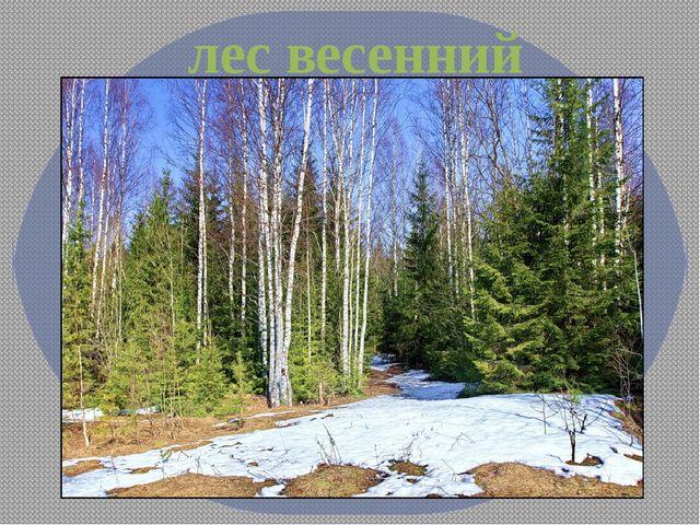 лес весенний