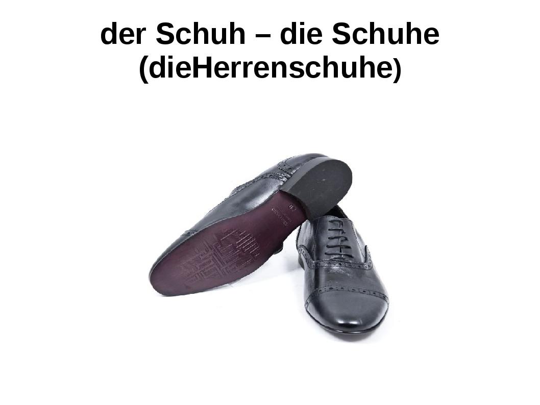 der Schuh – die Schuhe (dieHerrenschuhe)