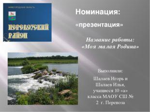 Номинация: «презентация» Выполнили: Шалаев Игорь и Шалаев Илья, учащиеся 10 «