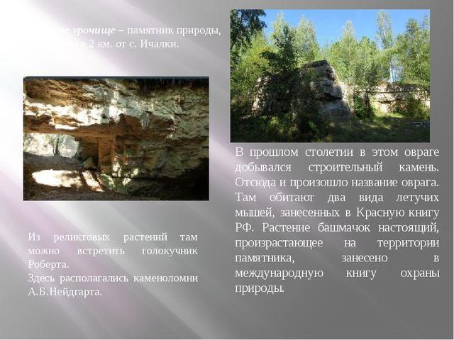 Каменное урочище – памятник природы, расположен в 2 км. от с. Ичалки. В прошл...