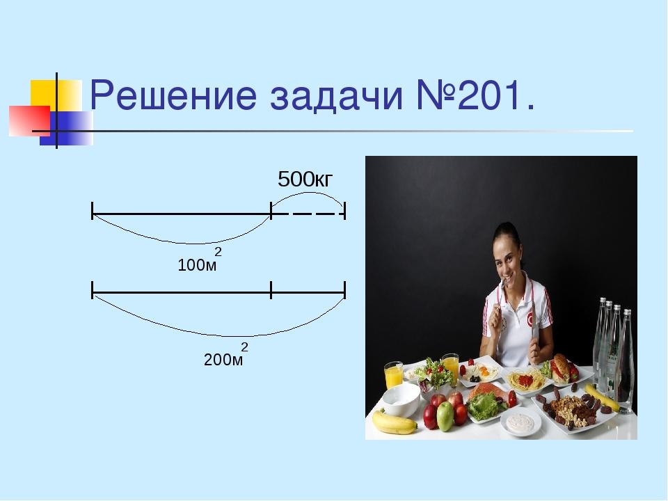 Решение задачи №201. 500кг 100м 2 200м 2