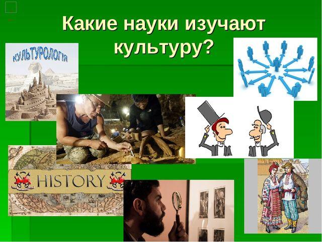 Какие науки изучают культуру?