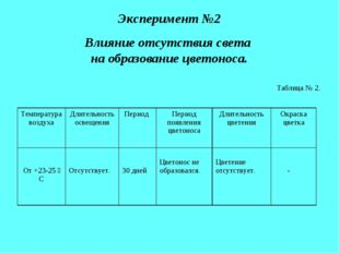 Эксперимент №2 Влияние отсутствия света на образование цветоноса. Таблица № 2