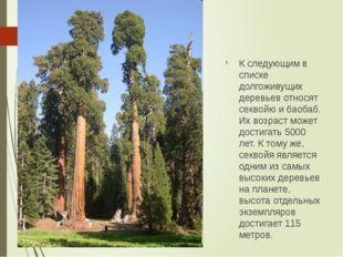 К следующим в списке долгоживущих деревьев относят секвойю и баобаб. Их возра