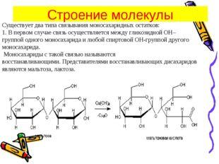 Существует два типа связывания моносахаридных остатков: 1.В первом случае св