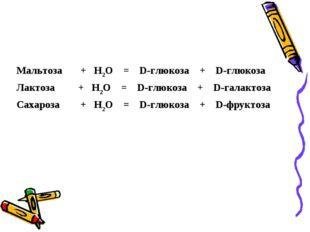 Мальтоза +Н2О = D-глюкоза + D-глюкоза Лактоза +