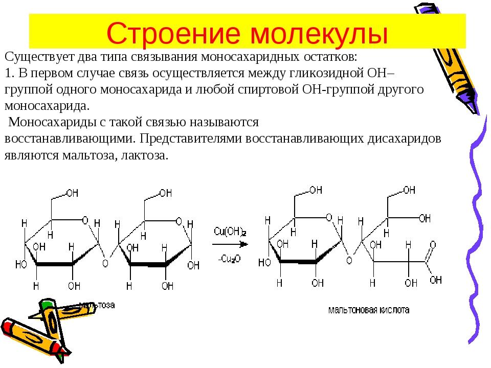 Существует два типа связывания моносахаридных остатков: 1.В первом случае св...