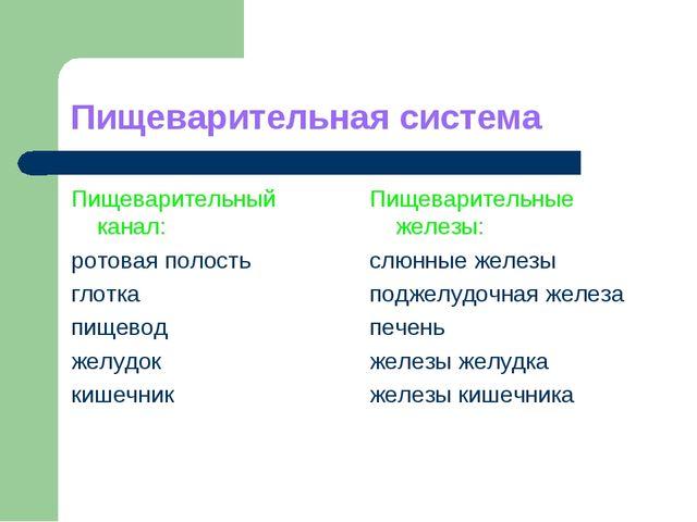Пищеварительная система Пищеварительный канал: ротовая полость глотка пищевод...