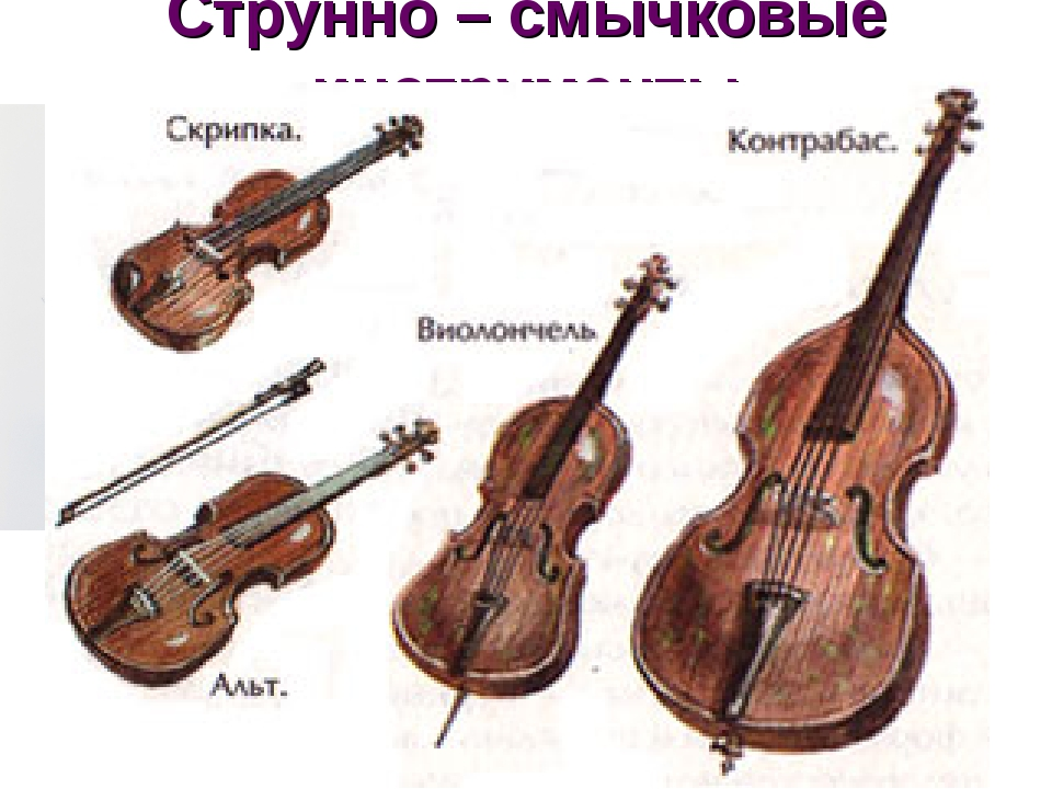 Струнно – смычковые инструменты