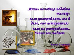 Жизнь человека подобна железу: если употреблять его в дело, оно истирается;