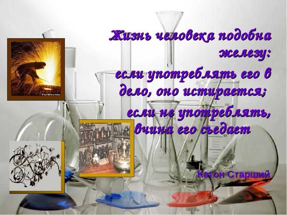 Жизнь человека подобна железу: если употреблять его в дело, оно истирается;...
