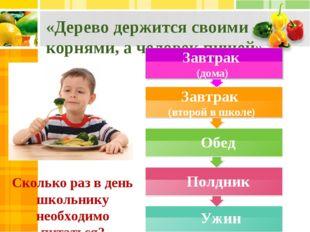 «Дерево держится своими корнями, а человек пищей» Сколько раз в день школьник