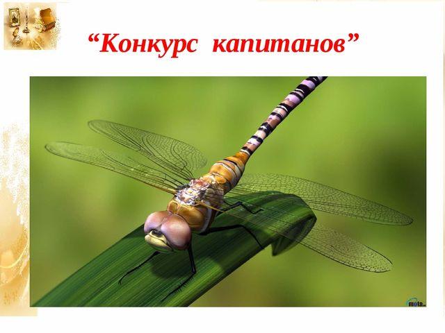 """Конкурс капитанов"""