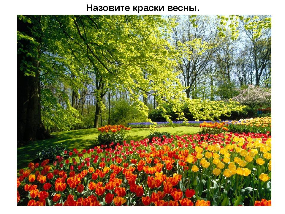 Назовите краски весны.