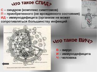 В – вирус И – иммунодефицита Ч - человека С – синдром (комплекс симптомов) П