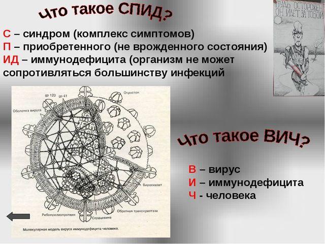 В – вирус И – иммунодефицита Ч - человека С – синдром (комплекс симптомов) П...