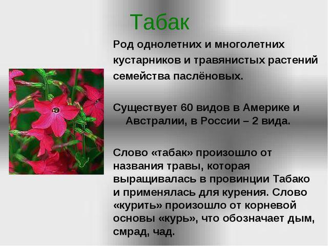 Табак Род однолетних и многолетних кустарников и травянистых растений семейст...