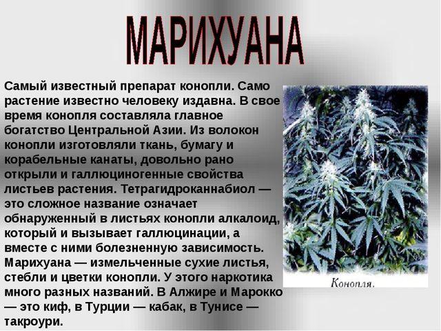 Самый известный препарат конопли. Само растение известно человеку издавна. В...