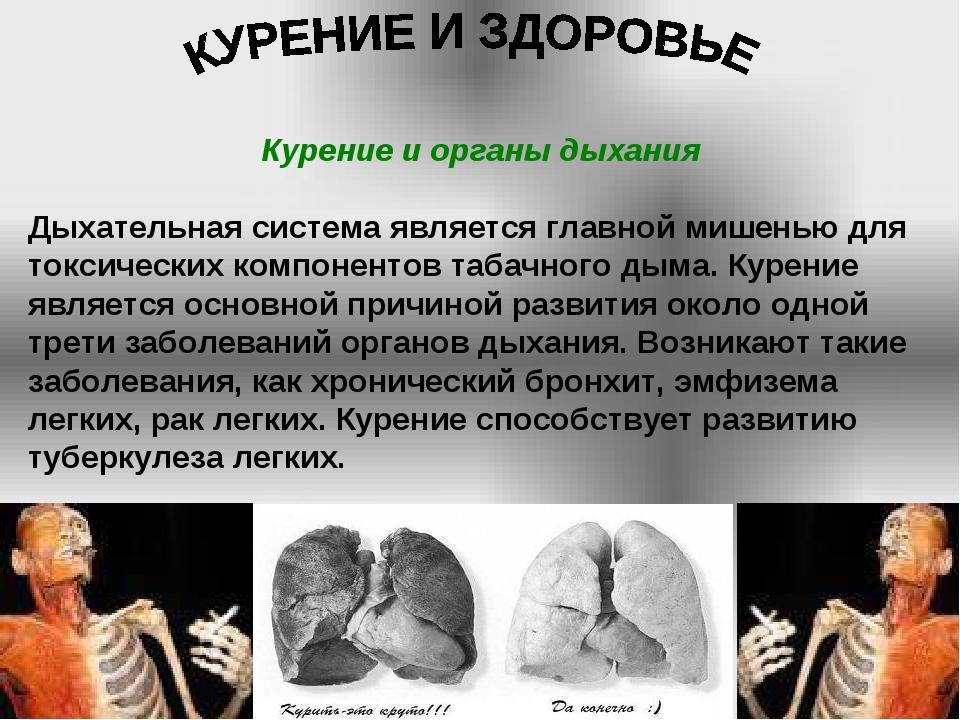 Курение и органы дыхания Дыхательная система является главной мишенью для ток...