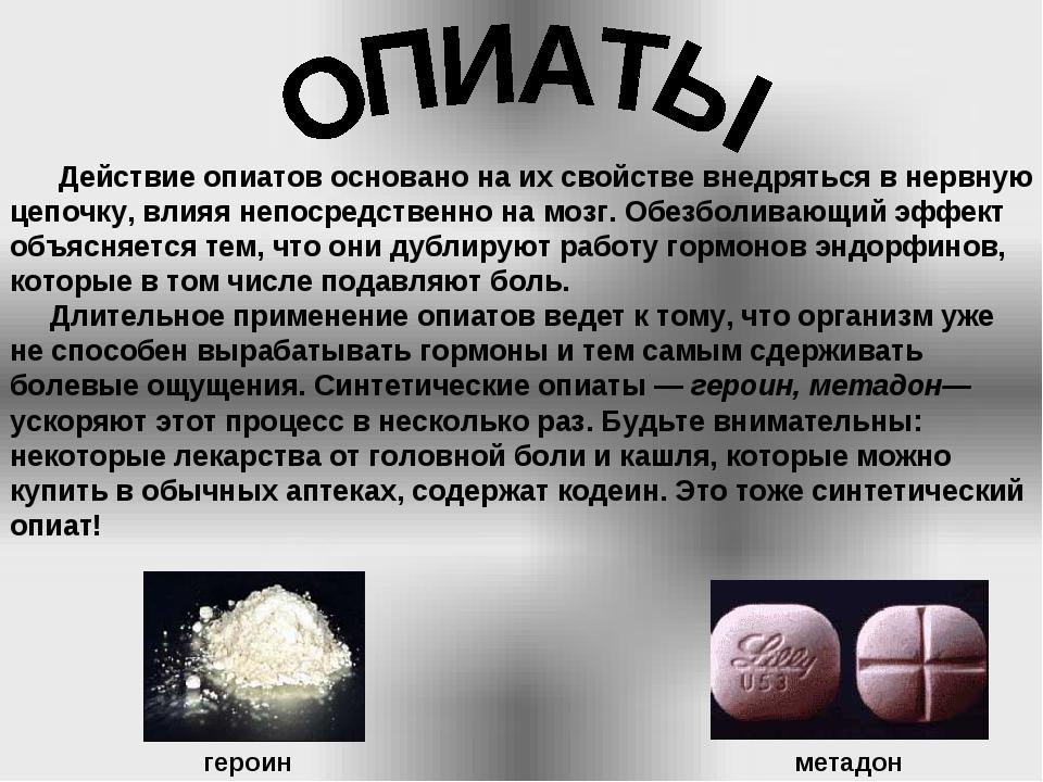 Действие опиатов основано на их свойстве внедряться в нервную цепочку, влияя...