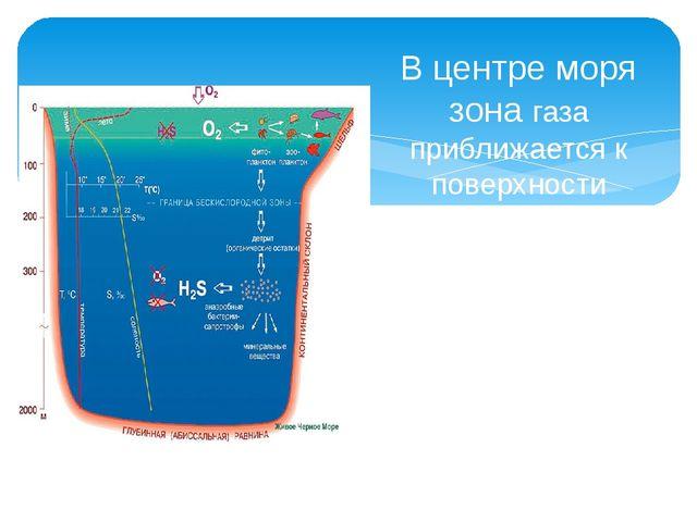 В центре моря зона газа приближается к поверхности примерно на 50 метров ,бли...
