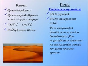 Климат Тропический пояс Тропические воздушные массы – сухие и жаркие tи+320 С