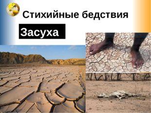 Стихийные бедствия Засуха