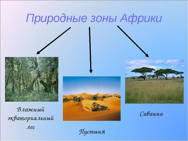 Природные зоны Африки Влажный экваториальный лес Саванна Пустыня