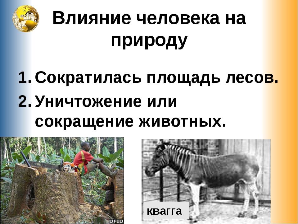 Влияние человека на природу Сократилась площадь лесов. Уничтожение или сокращ...