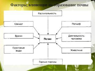 Факторы, влияющие на образование почвы