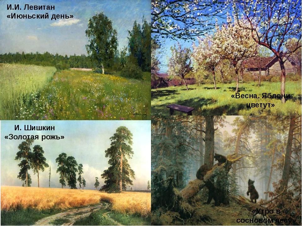 И.И. Левитан «Июньский день» «Весна. Яблони цветут» И. Шишкин «Золотая рожь»...