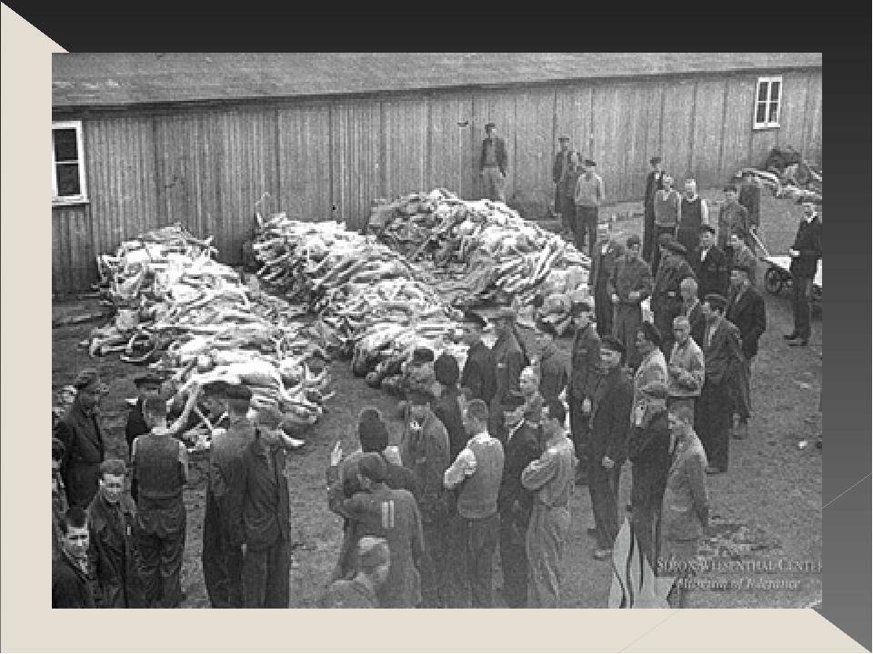 Фото дети в концлагере вов 14
