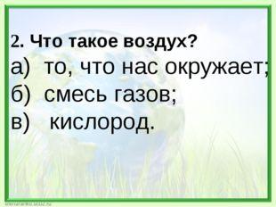 2. Что такое воздух? а) то, что нас окружает; б) смесь газов; в) кислород.